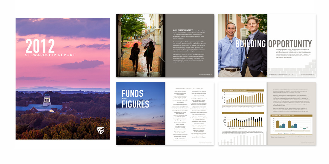 Stewardship Report 2012